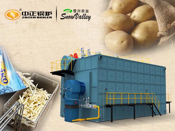 SZS系列燃气锅炉 为雪川食品量身定制环保节能锅炉系统