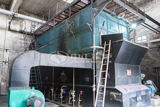 纺织业15吨DZL系列燃
