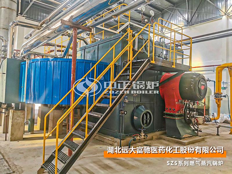 医药20和25吨SZS系列燃天然气蒸汽锅炉项目